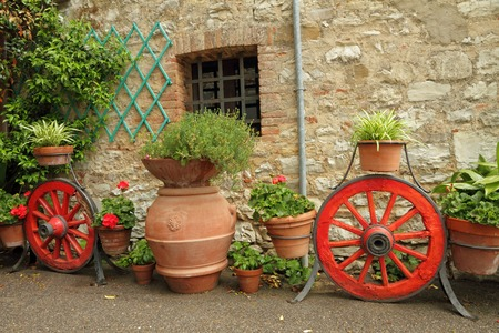 cute house: fancy country backyard with many planters with flowers , Tuscany,Italy, Europe