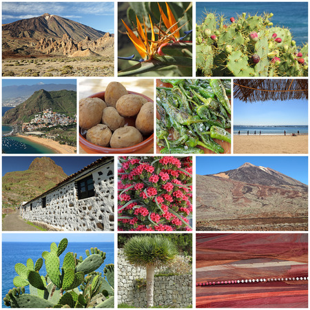 canarian: group of images from Tenerife, canarian Islands Stock Photo