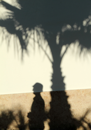 unreal unknown: shadow of palm tree and tourist projected on wall