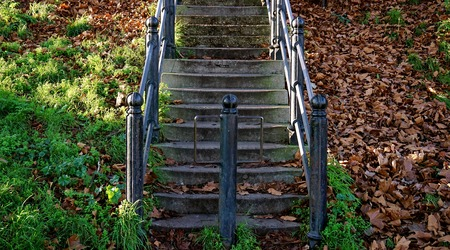 concrete steps: Rough, cracked, green-tinged concrete steps, sided with black iron railings, with iron divider. Grass and small plants to one side, brown fall leaves to the other, with sunlight falling across. Stock Photo