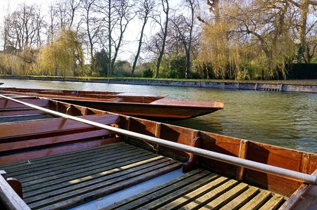 salix: Punts, one in close up view, moored along the side of the River Cam in Cambridge, England, with the opposite riverbank, lined with leafless winter trees and some willows Salix babylonica, in the background. Stock Photo