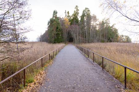 Footpath in Finland Ruissalo Island
