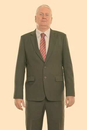 Studio shot of mature businessman standing Reklamní fotografie