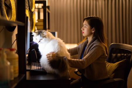 Young Asian woman holding pet cat while working from home