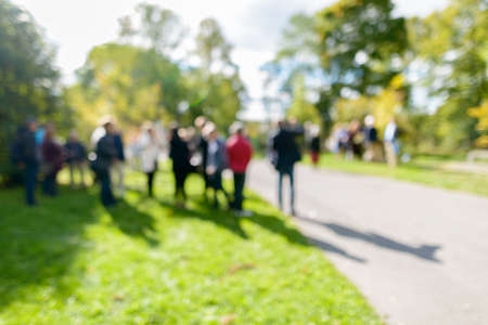 Defocused people in the park standing on grassy plain and tall green trees on sunny day