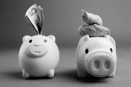 Two Piggy Banks In Black And White