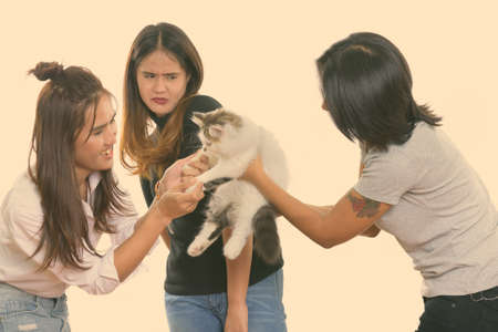 Three young Asian woman friends playing with cute cat with one friend looking scared
