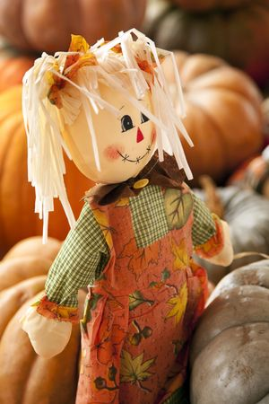 An autumn,Thanksgiving, or Halloween October rag doll around pumpkins in the vertical format. Stock Photo - 5776987