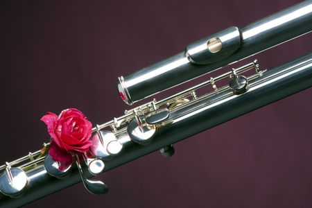 A bass flute and red rose isolated against a purple background in the horizontal format. photo