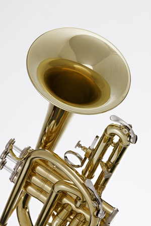A gold brass cornet or trumpet isolated against a white background Stock Photo