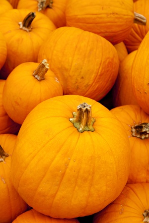 vertical format: A large stack of pumpkins in the vertical format. Stock Photo
