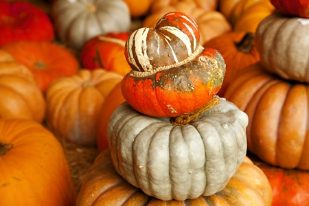 horizontal format horizontal: A large stack of pumpkins in the horizontal format.