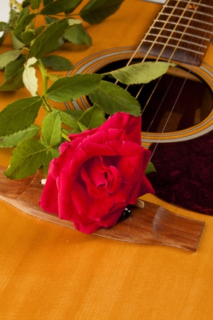 A red rose and stem on a natural color acoustic guitar in the vertical format. photo