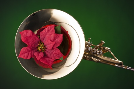 A gold brass French horn and red poinsettia flower isolated  against a spotlight green background. photo