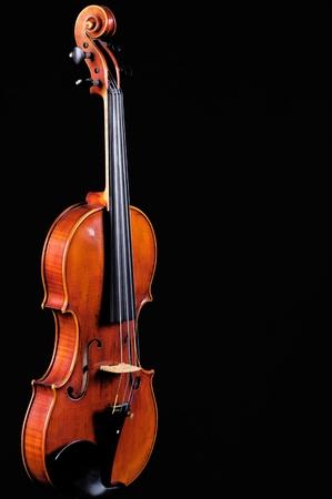 vibrations: Violin Viola Isolated on Black