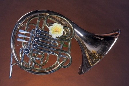 horizontal format horizontal: A gold brass French horn with a yellow rose isolated against a brown background in the horizontal format. Stock Photo