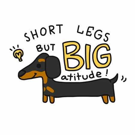 Short legs but big attitude dachshund dog cartoon vector illustration