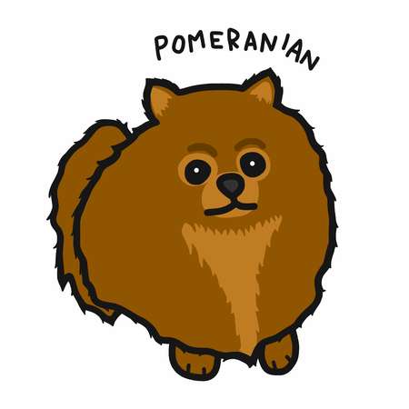 Pomeranian dog cartoon vector illustration Vettoriali