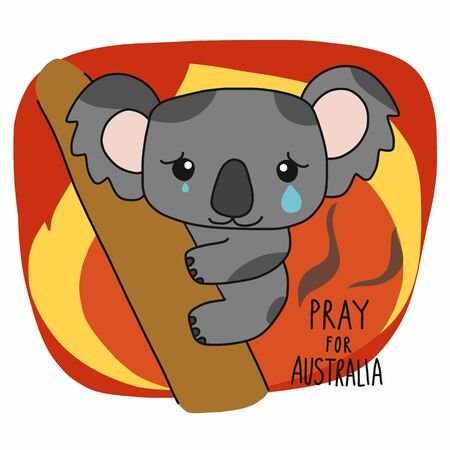 Pray for Australia Save koala from fire and cartoon vector illustration
