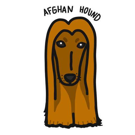 Afghan hound dog cartoon doodle style