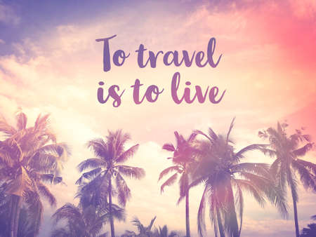 To travel is to live word on palm tree pink pastel sky background Stockfoto