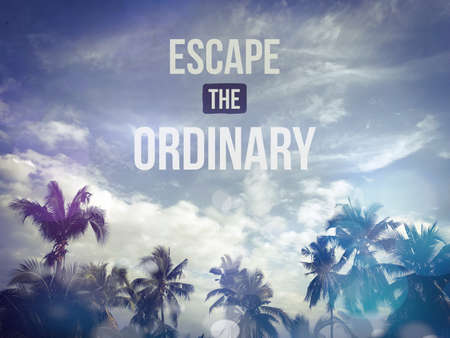 Escape the ordinary word on blue sky and palm tree bokeh background Stockfoto