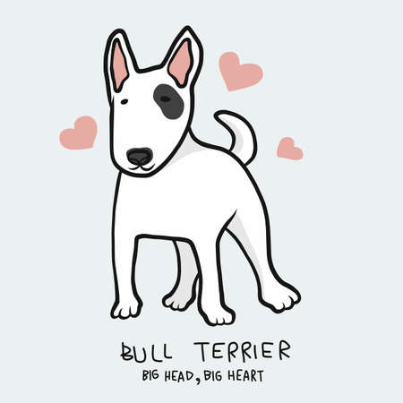 Bull Terrier dog , Big head, Big head cartoon vector illustration