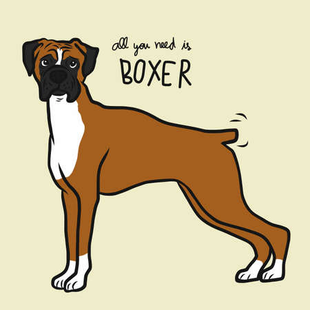All you need is Boxer dog cartoon vector illustration