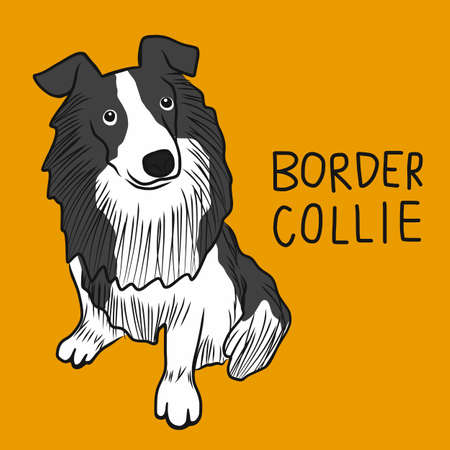 Border Collie dog cartoon vector illustration Stock Illustratie