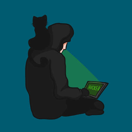 Hacker using laptop with black cat friend cartoon vector illustration