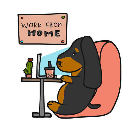 Dachshund dog work from home cartoon vector illustration