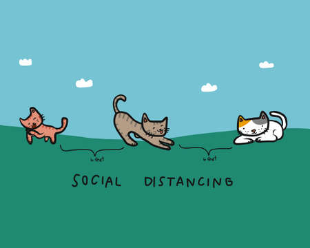 Cat social distancing cartoon vector illustration Stock Illustratie