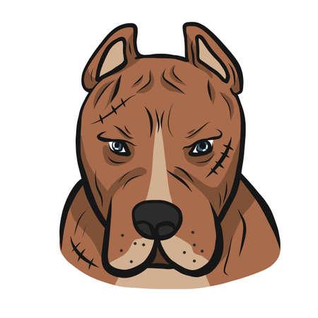 American pit-bull dog face cartoon vector illustration Ilustração