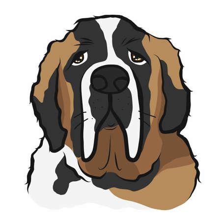 Saint Bernard dog face cartoon vector illustration