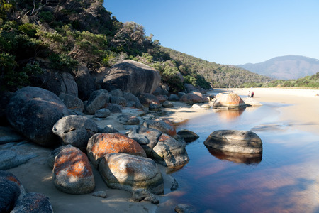 wilsons promontory: Beach and coastline of Wilsons Promontory National Park in Victoria, Australia, about 250km southeast of Melbourne, with blue sky and ocean as background and copy space. Editorial