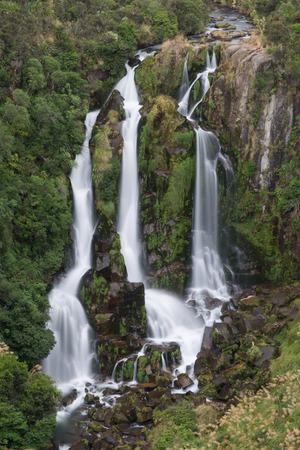 brooklet: Waipunga Falls, Cascades Waterfall