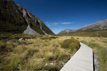 Path to the Mountains 版權商用圖片