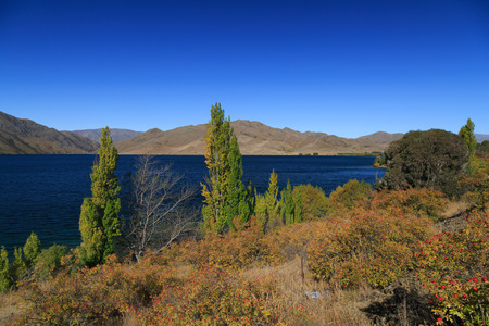 Lake Pupaki with mountains and bushes, New Zealand, 版權商用圖片