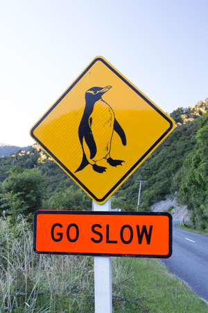 Road sign, yellow pinguin