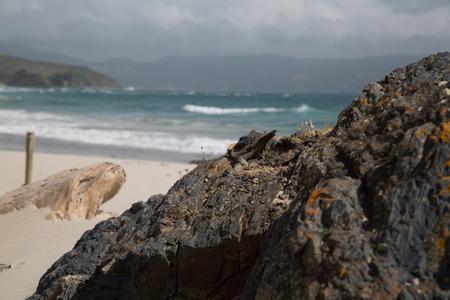 Lonely beach 版權商用圖片 - 44420218