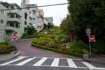 Empty Streets of San Francisco during Covid-19 Pandemic, quarantine, famous Lombard street, California Usa 스톡 콘텐츠