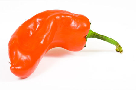 jalapeno pepper: red hot jalapeno pepper over white