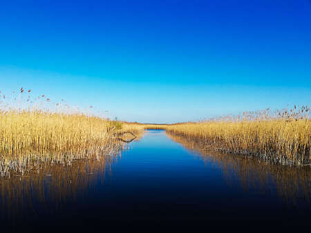 Blue sky and water - Landscape Park of the Lower Oder Valley, Poland Banco de Imagens
