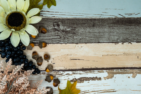 Fall pastel floral scene with sunflowers, acorns, grapes on wood background