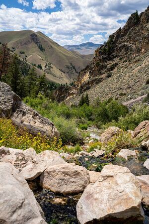 Portrait orientation view of Goldbug Hot Springs in Idaho, in the Salmon-Challis National Forest on a summer day 版權商用圖片