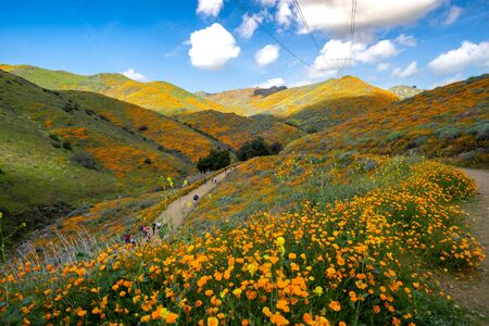 Lake Elsinore, California - March 22, 2019: Tourists and hikers walk along the trail of Walker Canyon during the Poppy wildflower superbloom
