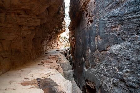 Slick sandstone canyon walls and a narrow, low-clearance walkway along the Observation Point hiking trail in Zion National Park