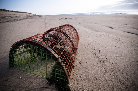 A lobster pot, sitting in the sand on the beach, with seaweed Reklamní fotografie