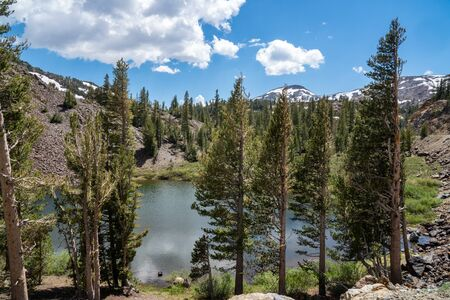 Ellery Lake along Tioga Pass road (State Route 120) in California Eastern Sierra Nevada Mountains in the summer