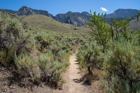 Dirt hiking trail leads to Goldbug Hot Springs (Elk Bend) in the Sawtooth Mountains in Idaho
